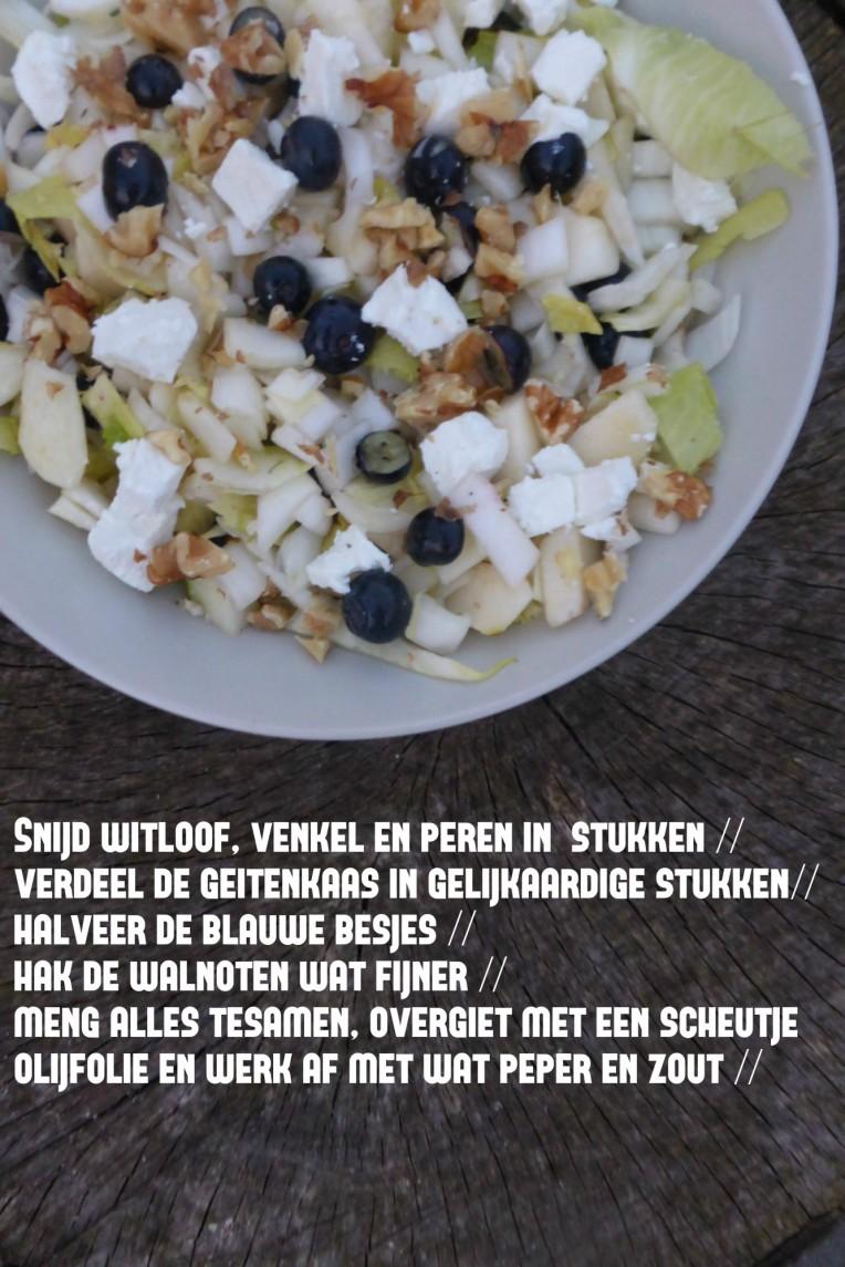 recept slaatje met bosbes witlof en geitenkaas